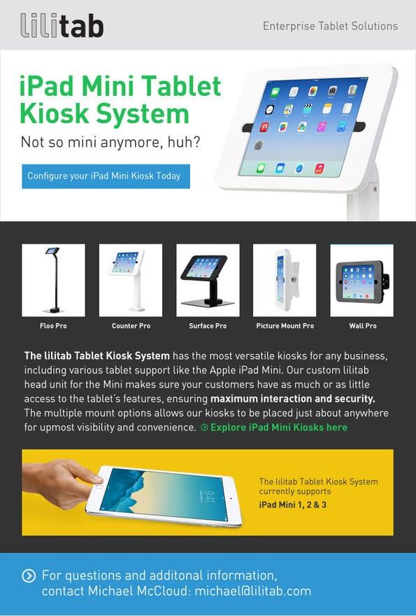 iPad Mini Kiosk